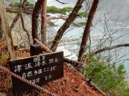 津波浸水地点